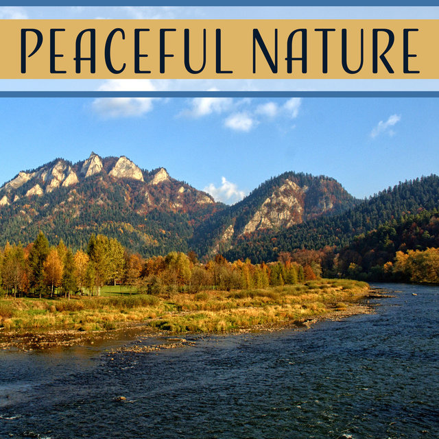 Peaceful Nature – Relaxing Sounds of Nature, Sounds of Rain