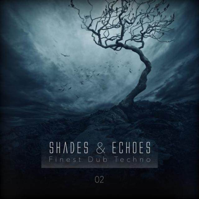 Shades & Echoes - Finest Dub Techno, Vol  2 by Various
