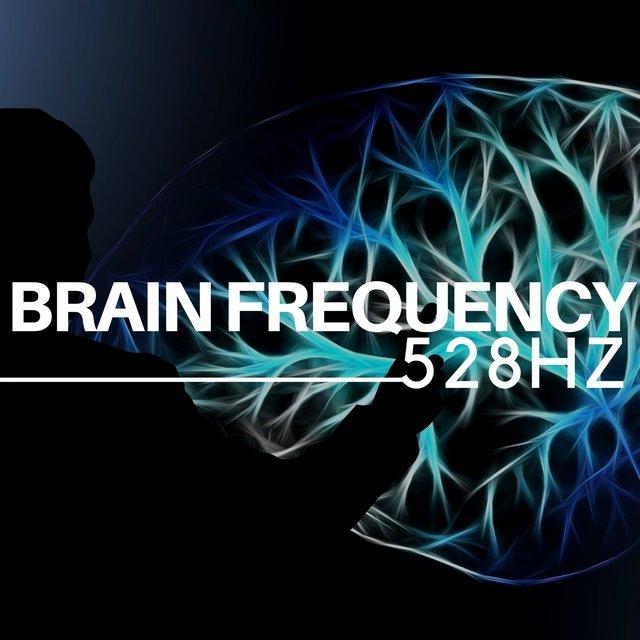 528Hz Brain Frequency - Sleep Music and Music for Deep Sleep by