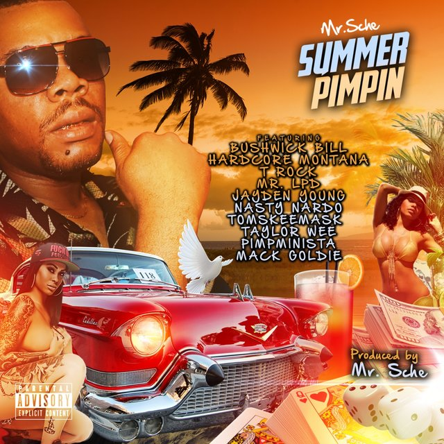 Listen to Summer Pimpin by Mr  Sche on TIDAL