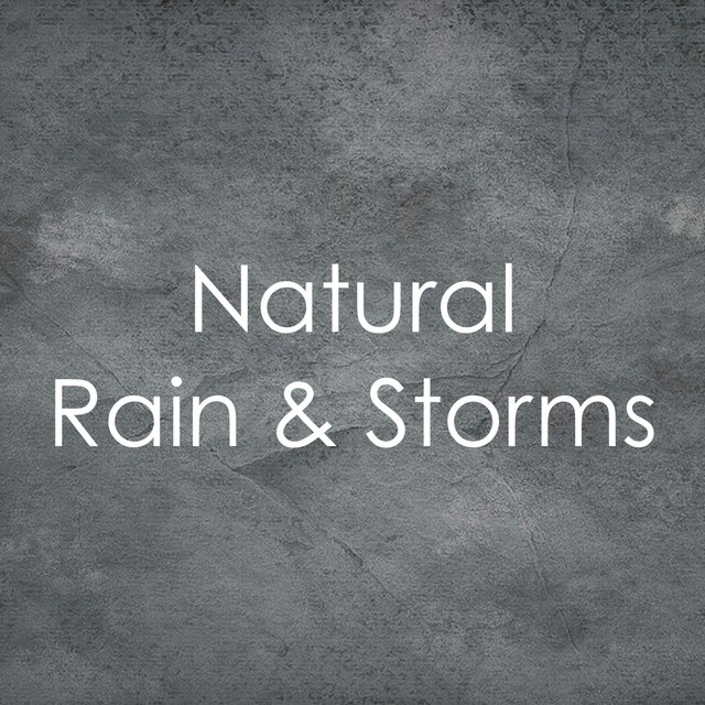 1 Peaceful Hour for You: Rain and Gentle Storms by Sleep
