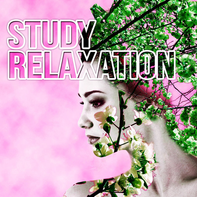 Listen to Study Relaxation - Music for Work, Music for the