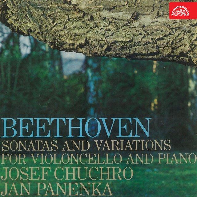 7 Variations on Duet Bei Männern, welche Liebe fühlen from Opera by