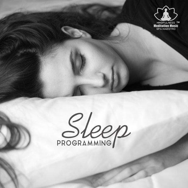 Sleep Programming - Lucid Dream, Meditation, Healing Therapy