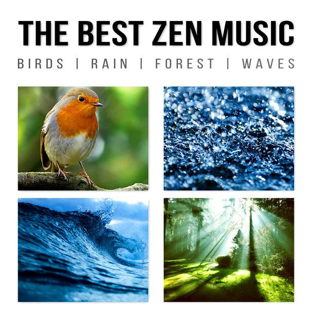 The Best Zen Music: Birds, Rain, Forest, Waves - Music to