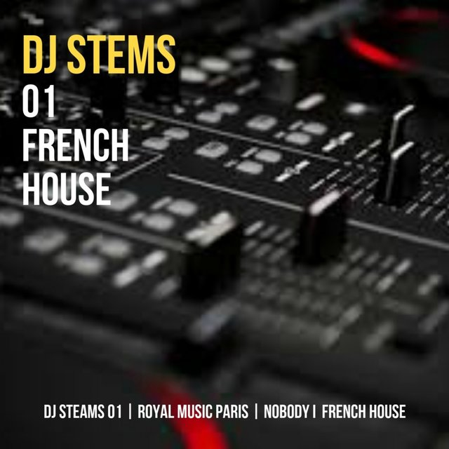 DJ STEMS 01 FRENCH HOUSE by Royal music Paris on TIDAL