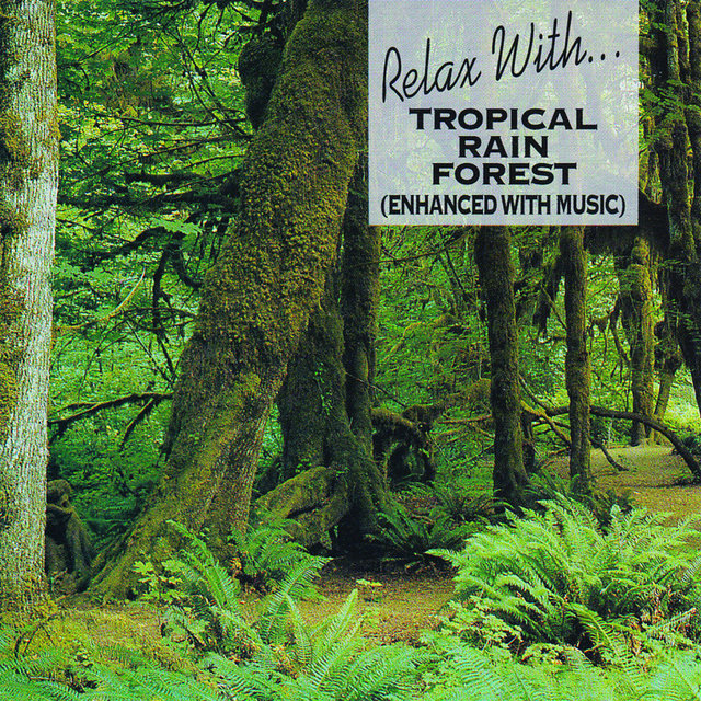 Listen to Relax with Tropical Rain Forest by The London