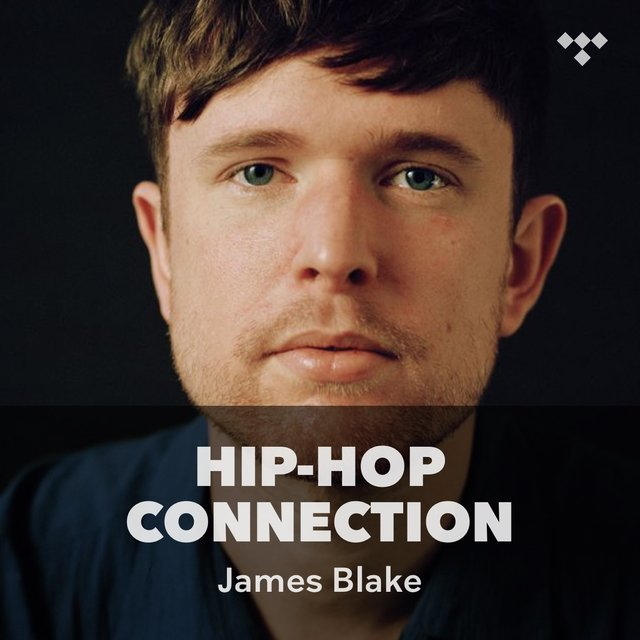 Assume Form James Blake: Flipboard: James Blake Lights Up The Hollywood Palladium