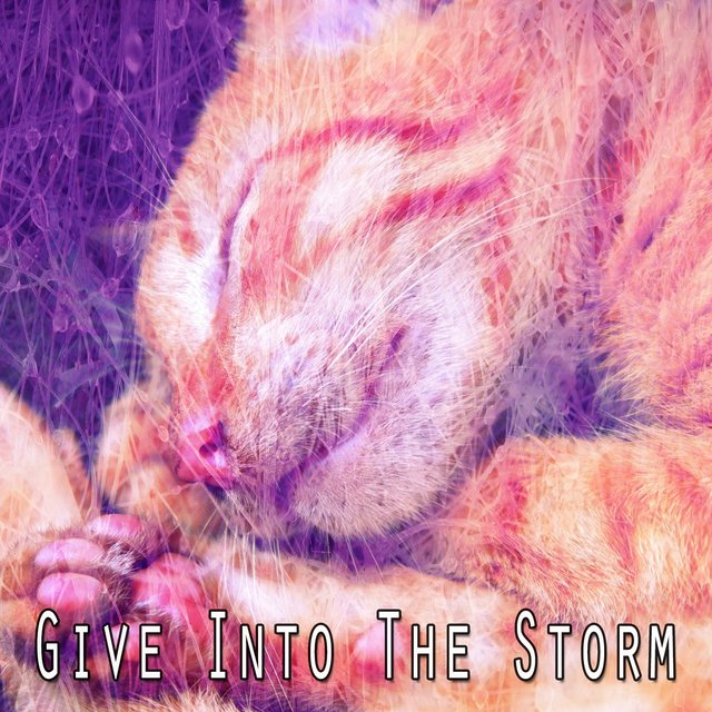 Give Into the Storm
