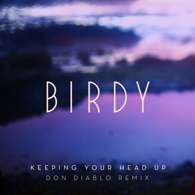 Keeping Your Head Up (Don Diablo Remix) [Radio Edit]
