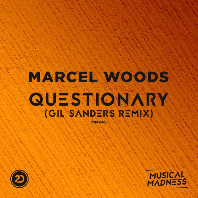 Questionary (Gil Sanders Remix)