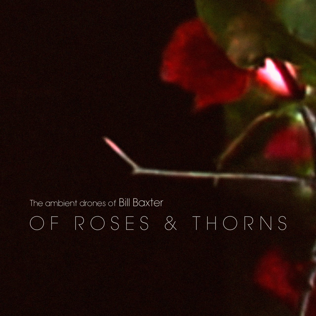 Of Roses & Thorns