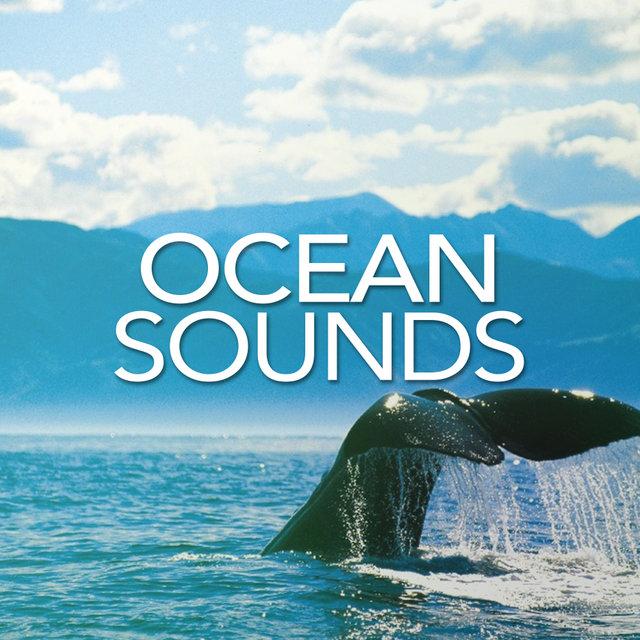 Ocean Sounds on TIDAL