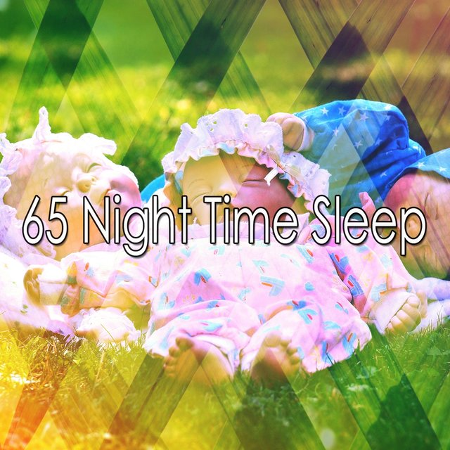 65 Night Time Sleep