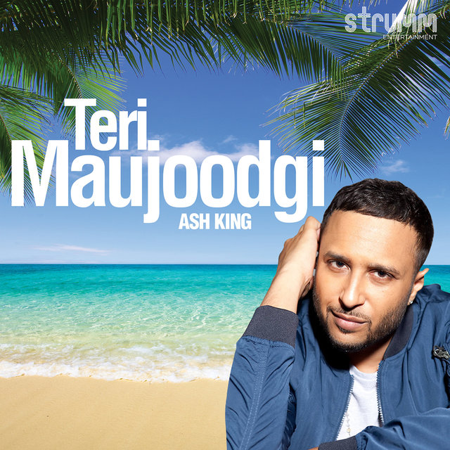 Teri Maujoodgi - Single