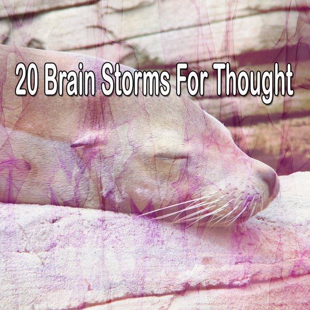 20 Brain Storms for Thought