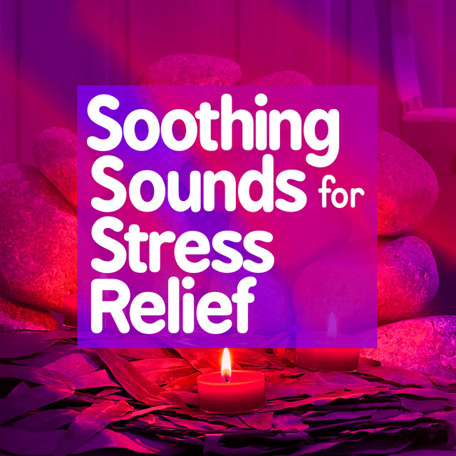 Soothing Sounds for Stress Relief