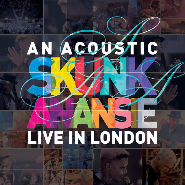 An Acoustic Skunk Anansie - Live in London (Live and Acoustic)