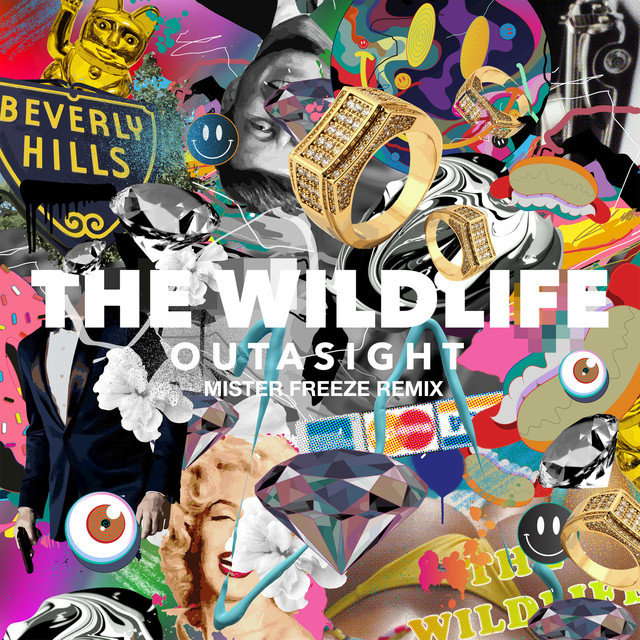 The Wild Life (Mister Freeze Remix) - Single