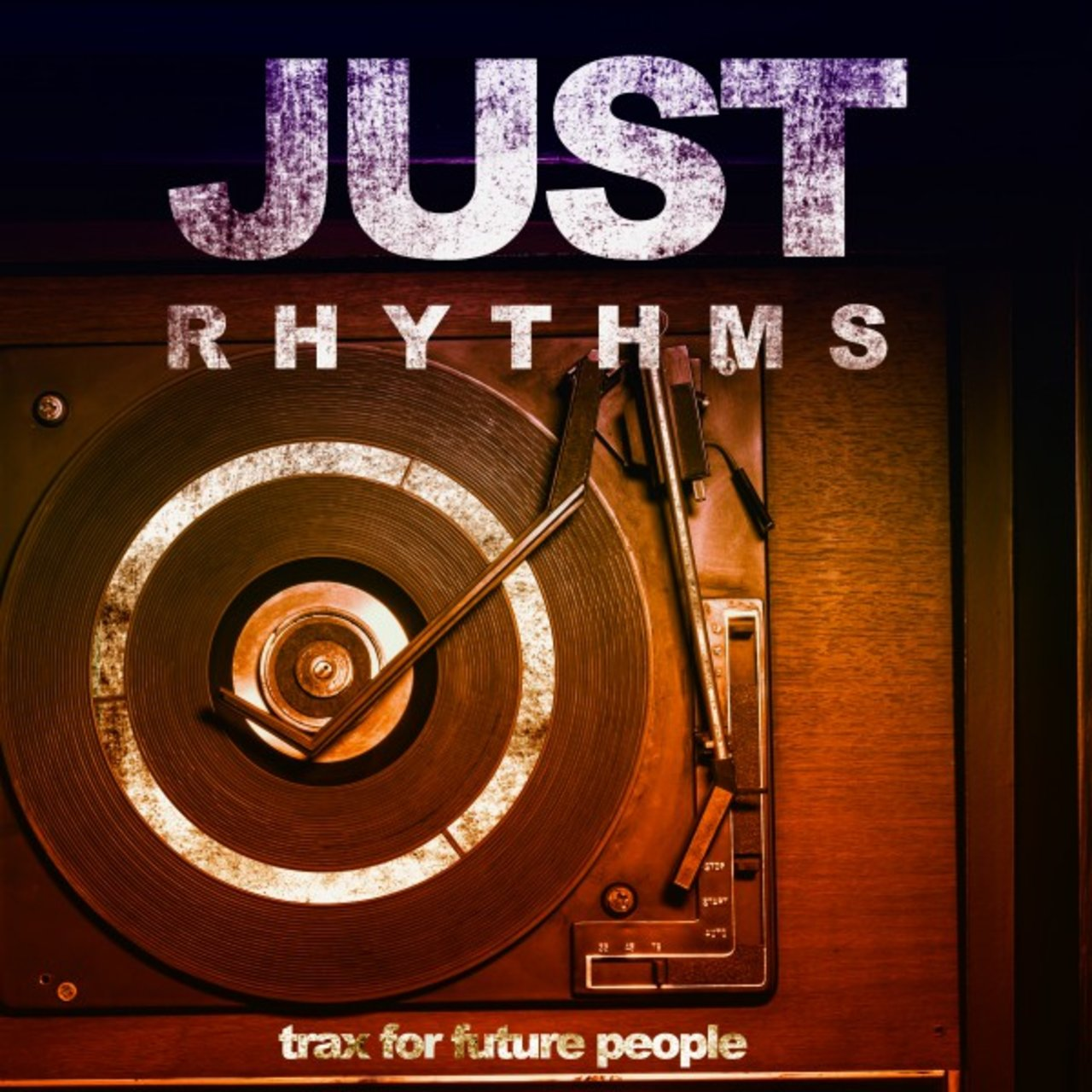 Just Rhythms (Trax for Future People)
