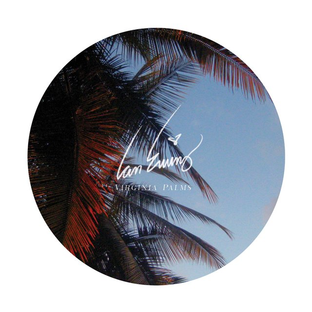 Phases (feat. Virginia Palms)