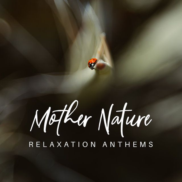 Mother Nature Relaxation Anthems: 2019 New Age Music for Total Relax, Calming Down Sounds, Rest After Long Day