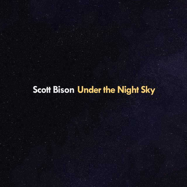 Under the Night Sky