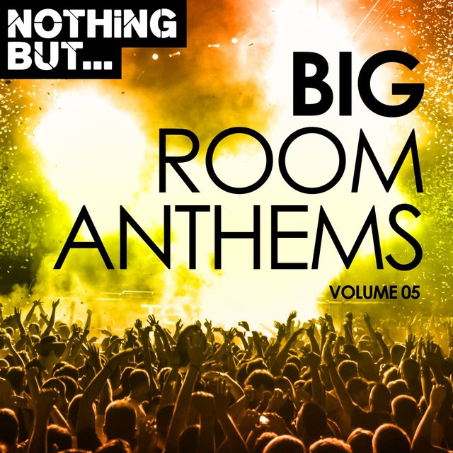 Nothing But... Big Room Anthems, Vol. 05