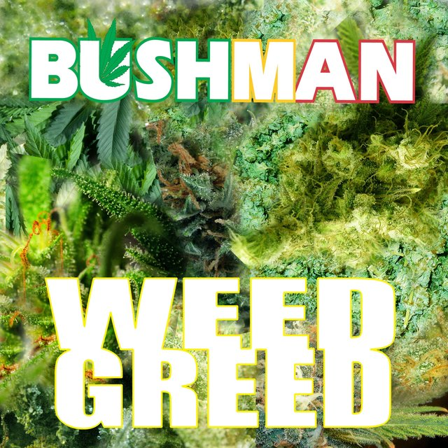 Weed Greed - Single
