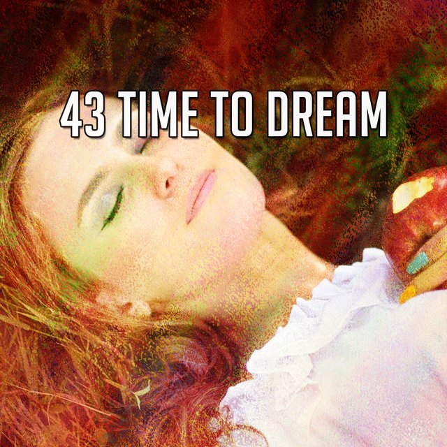 43 Time to Dream