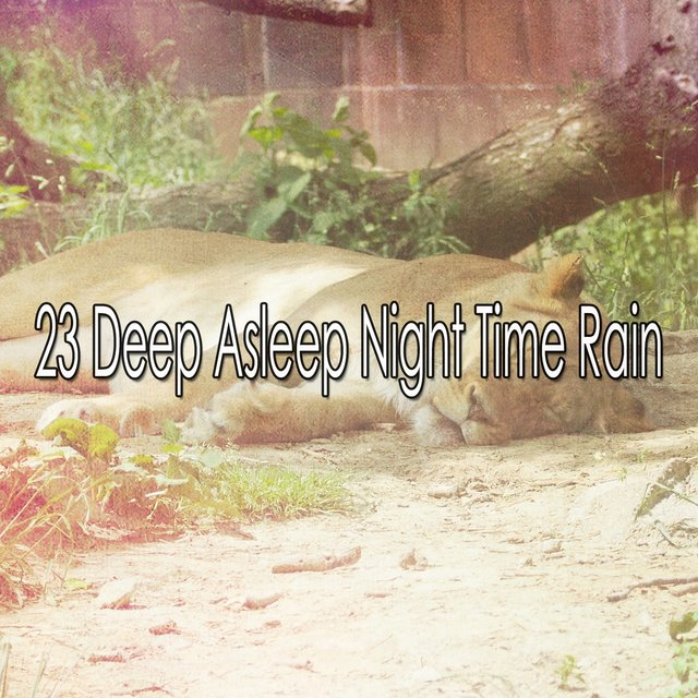 23 Deep Asleep Night Time Rain