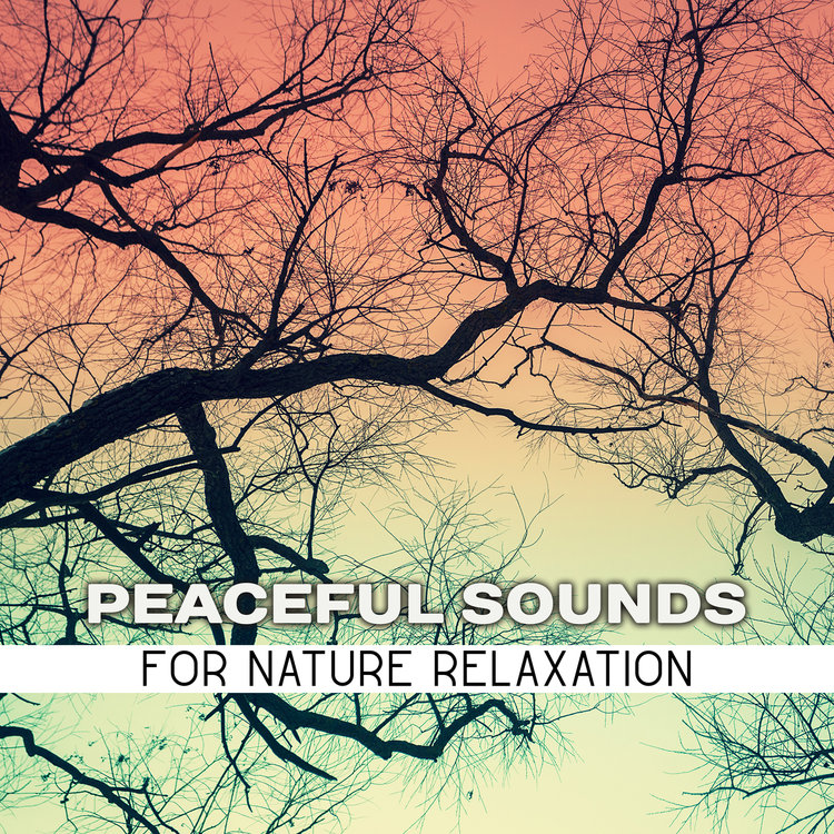 Buy Peaceful Sounds for Nature Relaxation by Echoes Of