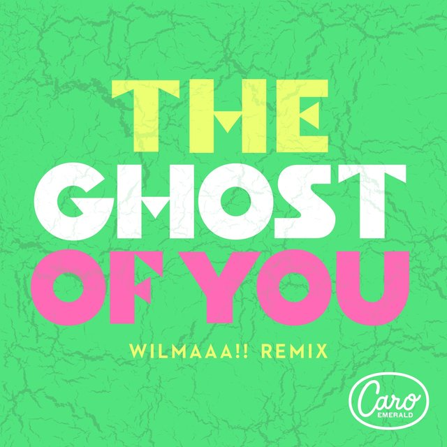 The Ghost Of You (Wilmaaa!! Remix)