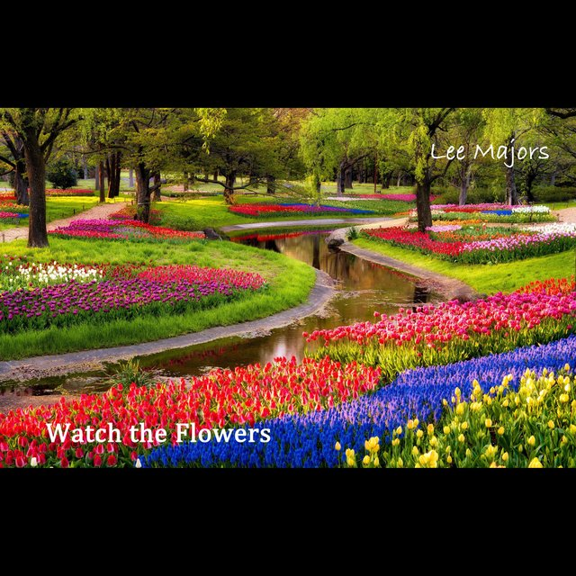 Watch the Flowers