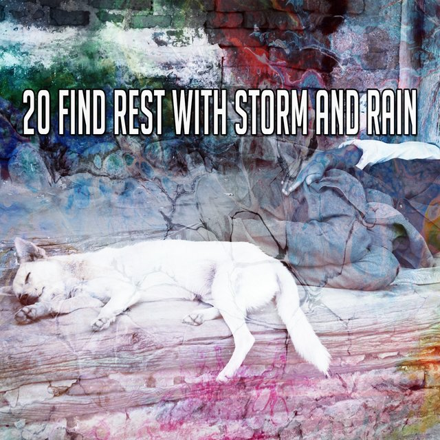 20 Find Rest with Storm and Rain