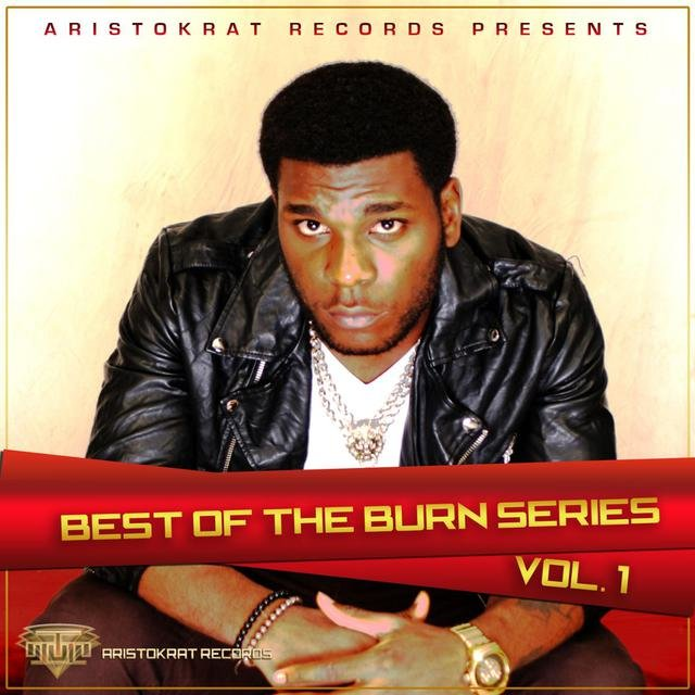 Best of Burn Series, Vol. 1