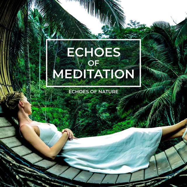Echoes of Meditation