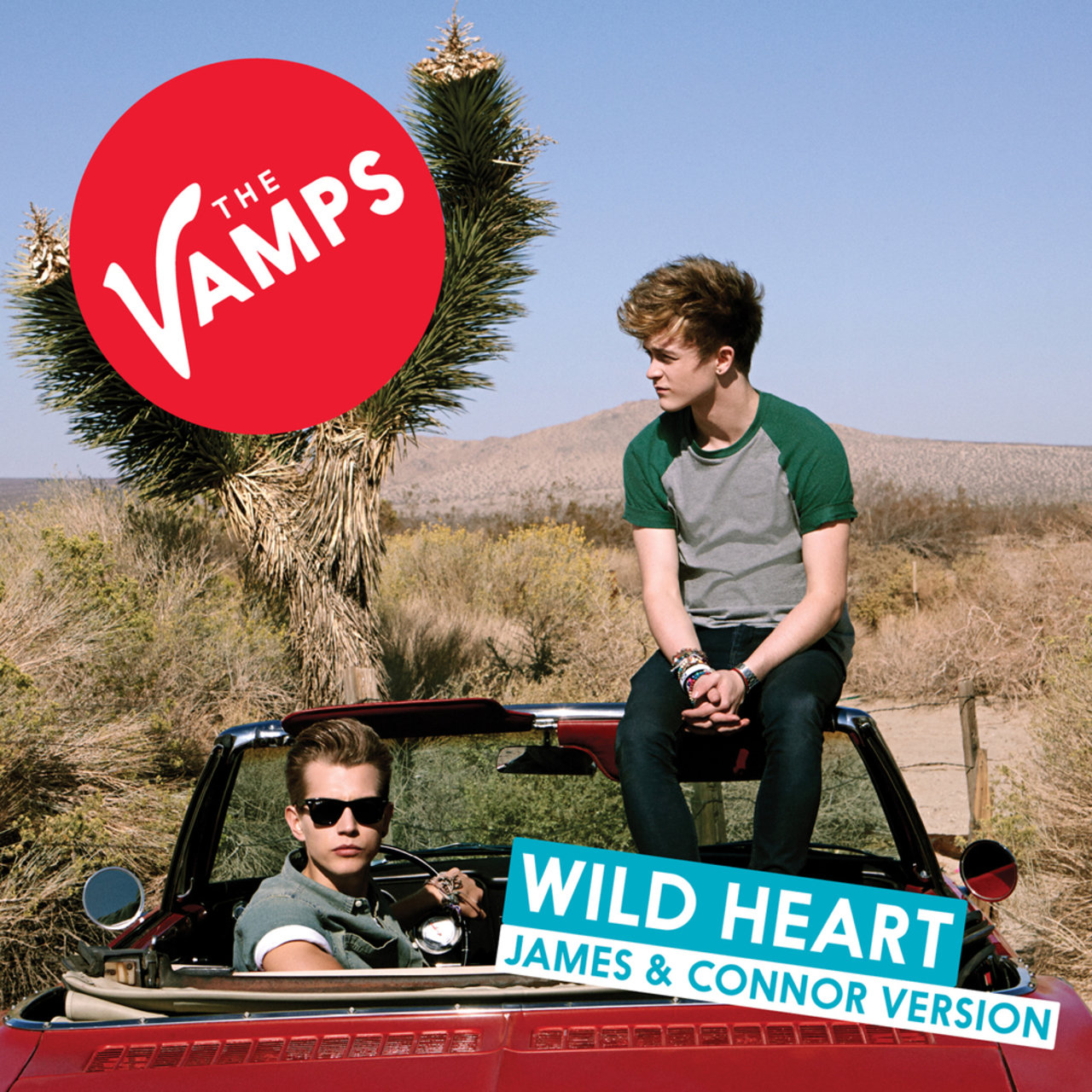Wild Heart (James & Connor Version)