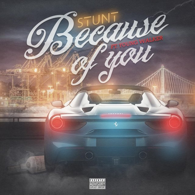 Because of You (feat. Young Walker)