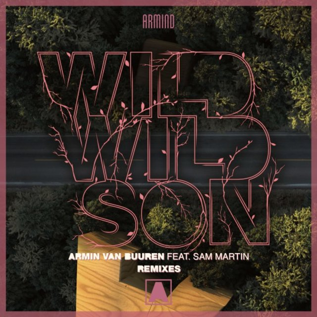 Wild Wild Son (Remixes)