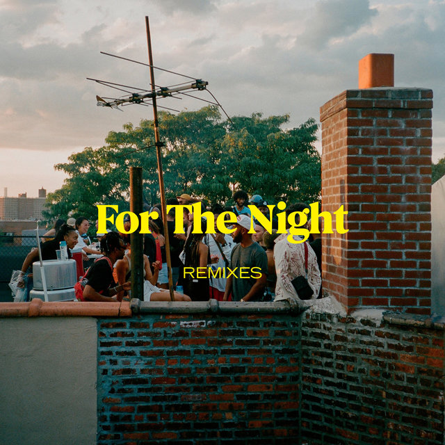 For The Night - Remixes
