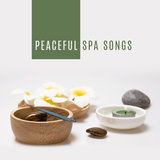 Celtic Top Spa Music