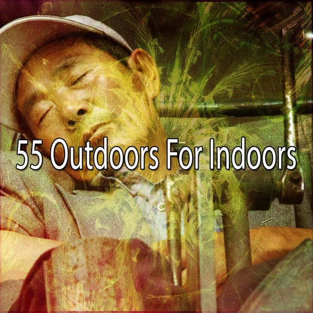 55 Outdoors for Indoors