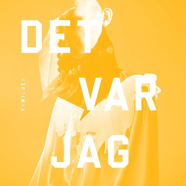 Det var jag - The Digital Vinyl Version