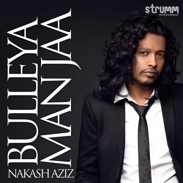Bulleya Man Jaa - Single