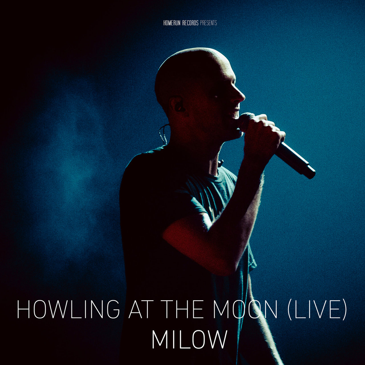 Howling at the Moon (Live in Vienna)