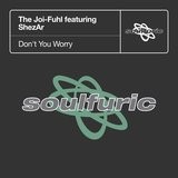 Don't You Worry (feat. ShezAr) [DJ Spen & Reelsoul Remix]