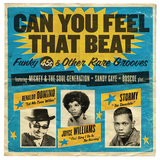 Can You Feel That Beat: Funky 45s and Other Rare Grooves