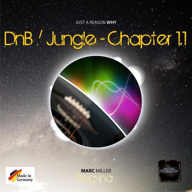 DnB Just A Reason Why (Chapter 1.1)