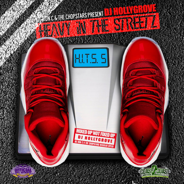 Heavy in the Streetz: Hits 5